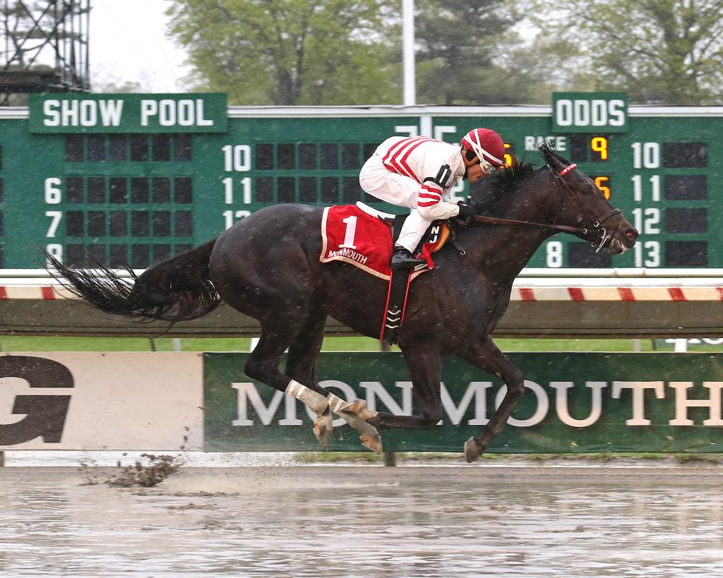 Long Branch Stakes winner Joevia. (Ryan Denver/EQUI-PHOTO)