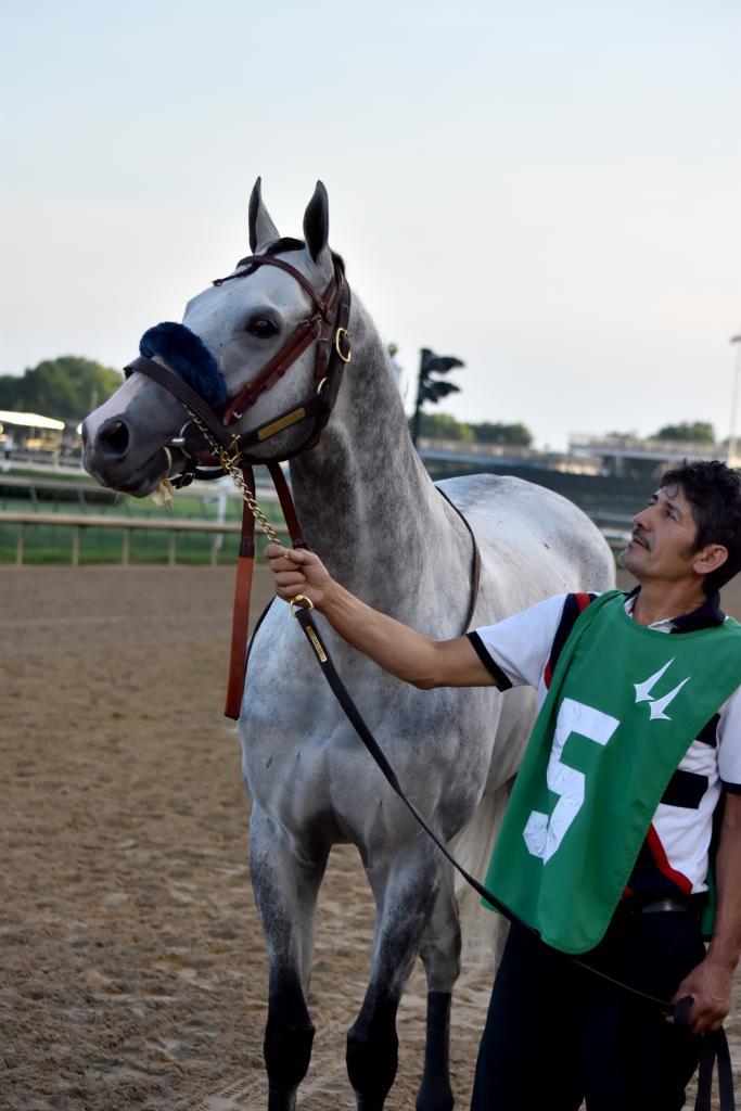 One of the more lovable horses in racing over the last few years is Kasaqui, who always seems to run a good race. It also helps that he's a character. When he saw the photographers at the tunnel, he stopped and posed until his groom forced him to move.