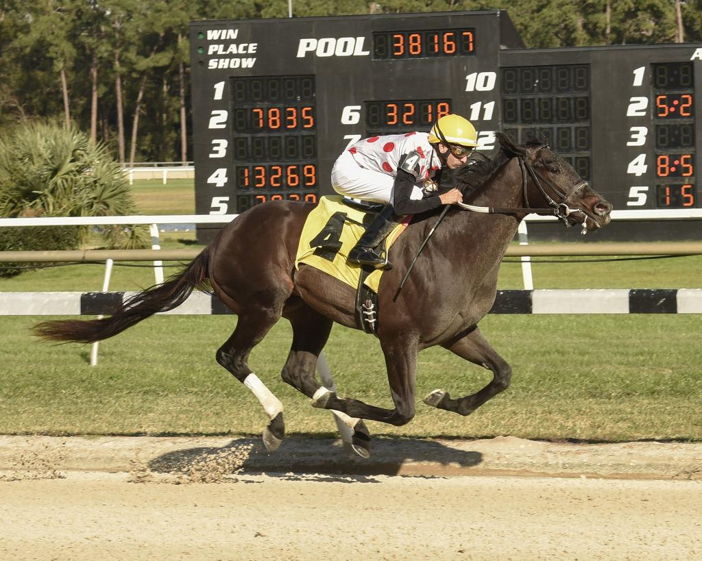 Toyota Blue Grass Stakes runner-up Win WIn WIn, above winning the Pasco Stakes at Tampa Bay Downs. (SV Photography)