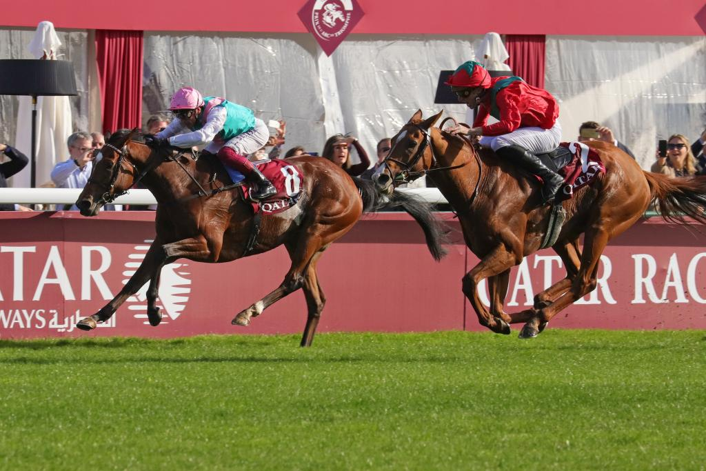 Waldgeist makes up ground on Enable in deep stretch at Longchamp. (Eclipse Sportswire)