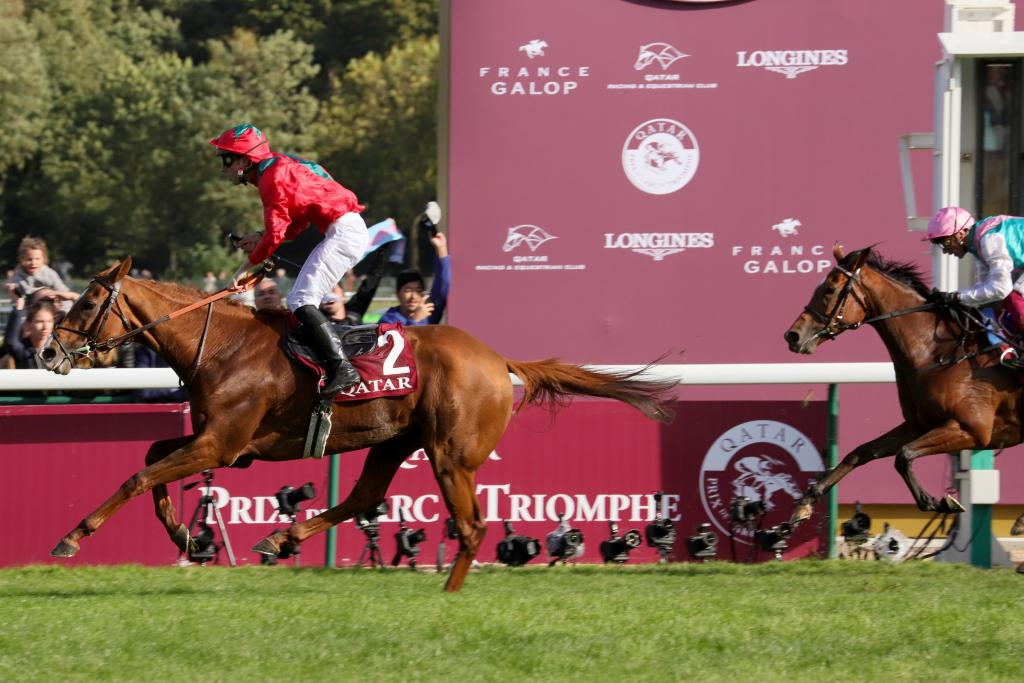 Waldgeist wins the Qatar Prix de l'Arc de Triomphe, with Enable a valiant second. (Eclipse Sportswire)
