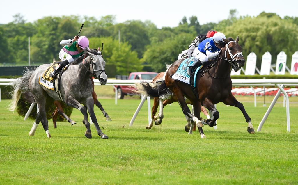 Tepin earned her first Grade 1 win on the 2015 Belmont Stakes undercard when she took the Just a Game Stakes. (Eclipse Sportswire)