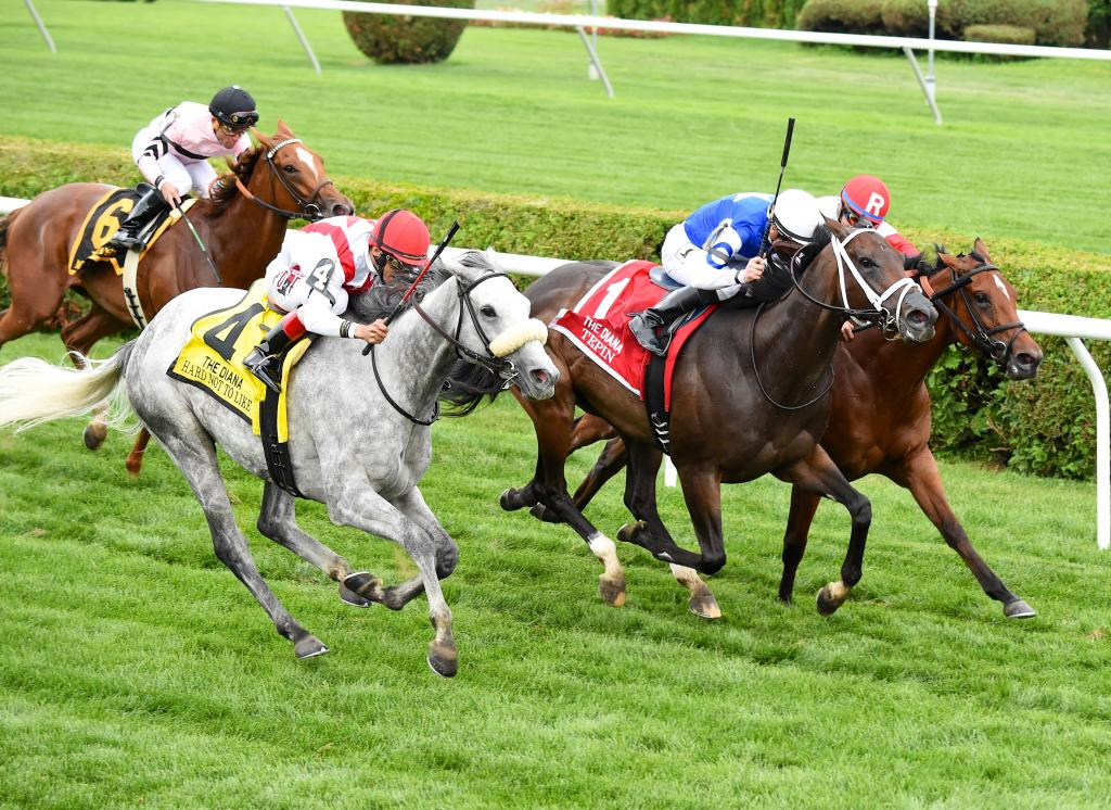 Tepin, middle, was edged by Hard Not to Like in the Grade 1 Diana Stakes in July 2015. She dropped a pair of heart-breakers at Saratoga that summer before an eight-race winning streak. (Eclipse Sportswire)