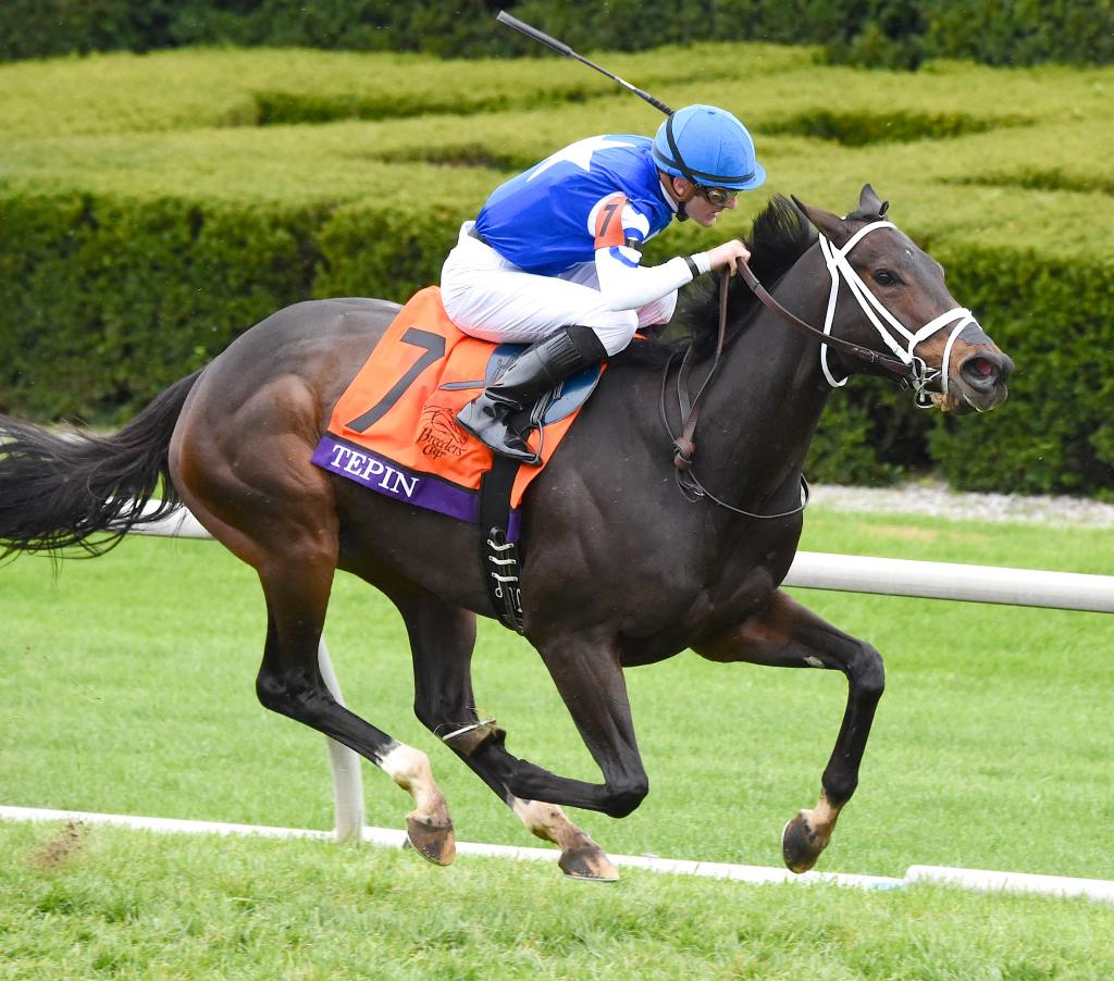 Tepin winning the 2015 Breeders' Cup Mile at Keeneland Race Course. (Eclipse Sportswire)