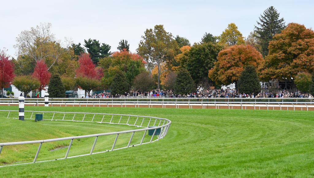 Scenes from the 2015 Breeders' Cup World Championships at Keeneland.