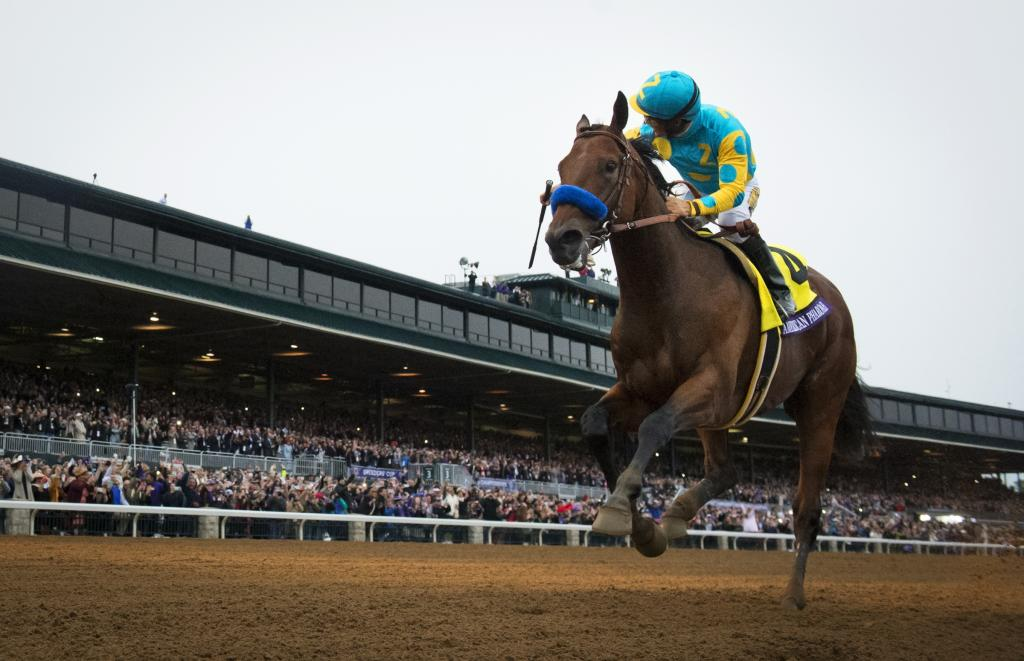 American Pharoah winning the 2015 Breeders' Cup Classic. (Eclipse Sportswire)