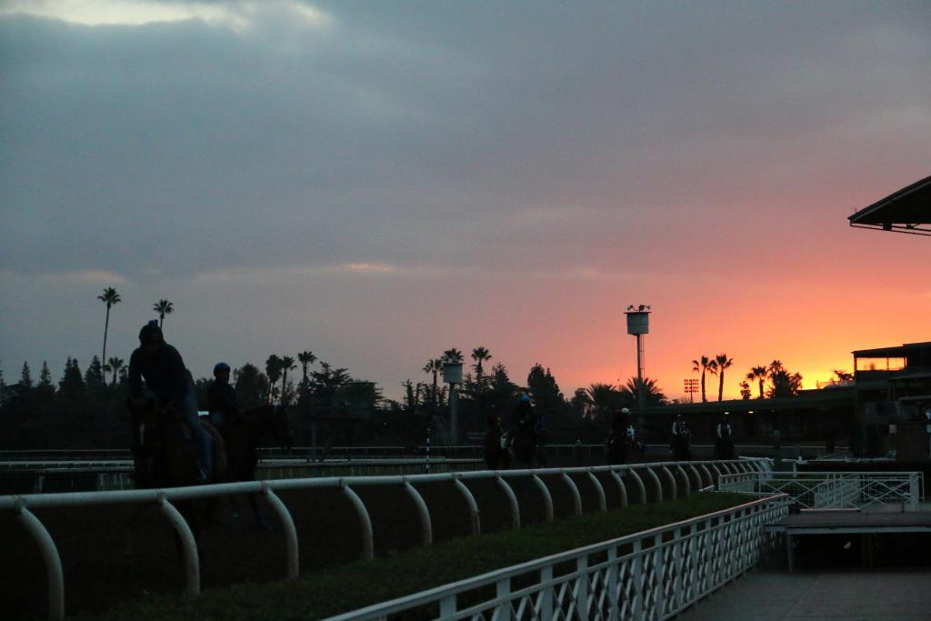 It was another spectacular dawn at Santa Anita Park this morning, and as the sun came up, the equine stars came out to play. (Penelope P. Miller/America's Best Racing)