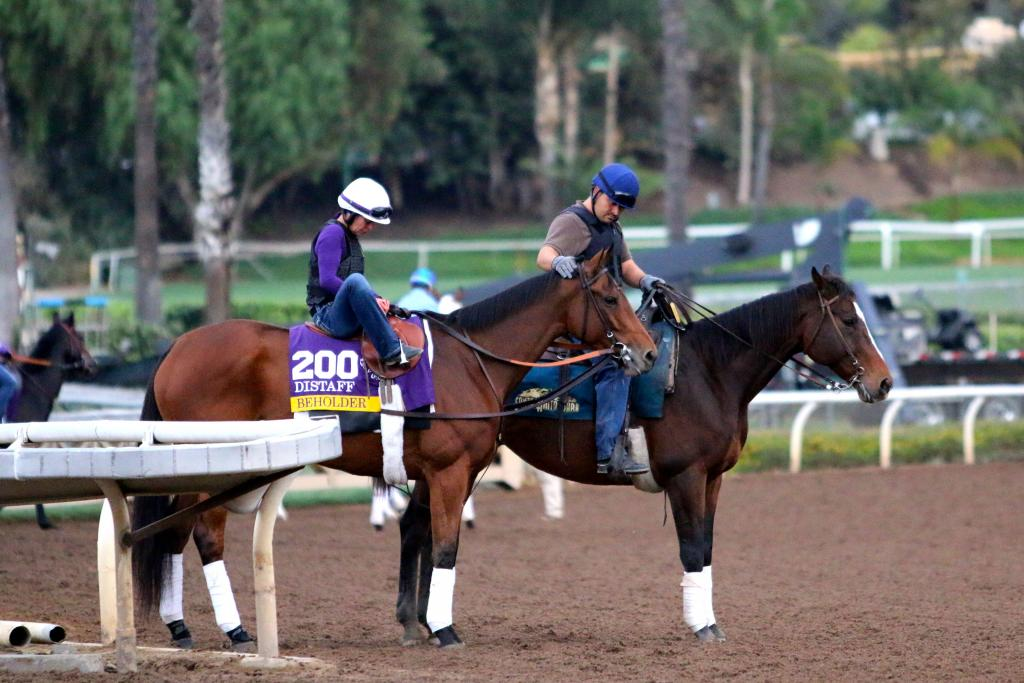 One of the biggest fan favorites in the race is certainly Beholder; she's already won the Breeders' Cup Juvenile Fillies and Distaff in her amazing career, and she's trying to capture the crown one more time this year. (Penelope P. Miller/America's Best Racing)