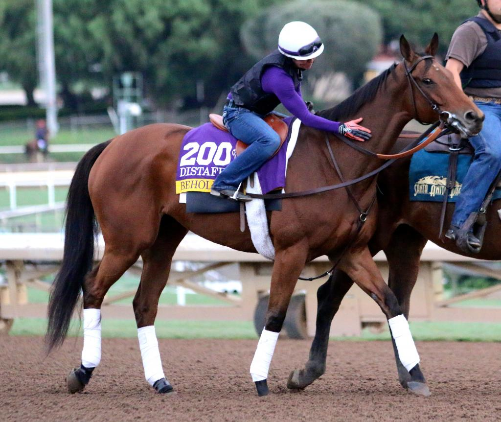 As Beholder moved onto the track for her gallop, her longtime rider Janeen Painter was giving her a ton of pats as the racemare eyeballed the assembled photographers and fans gathered at the rail abutting the track. (Penelope P. Miller/America's Best Racing)