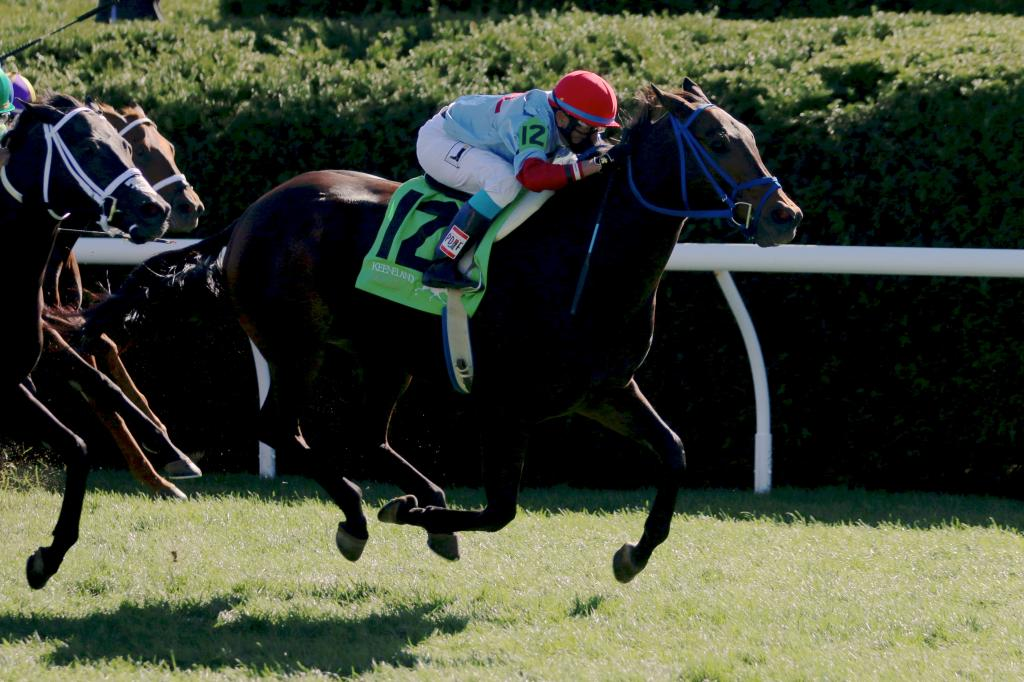 And he didn't disappoint: Mongolian Saturday shone in the Woodford Stakes Presented by Keeneland Select, winning by an easy half-length. (Penelope P. Miller/America's Best Racing)