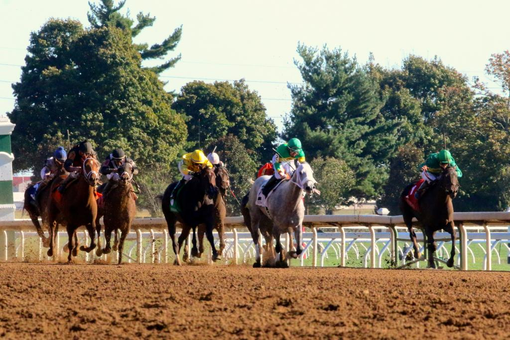 "And that was just the start of the major racing action throughout the afternoon; next up was the Thoroughbred Club of America Stakes, a Breeders' Cup ""Win and You're In"" for the Filly and Mare Sprint. (Penelope P. Miller/America's Best Racing)"