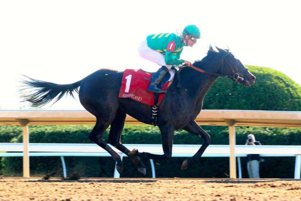 Irish Jasper struck the lead in mid-stretch and never looked back. Jockey Julien Leparoux was wearing the silks of owner Lane's End Farm, one of the most revered operations in the racing world. (Penelope P. Miller/America's Best Racing)