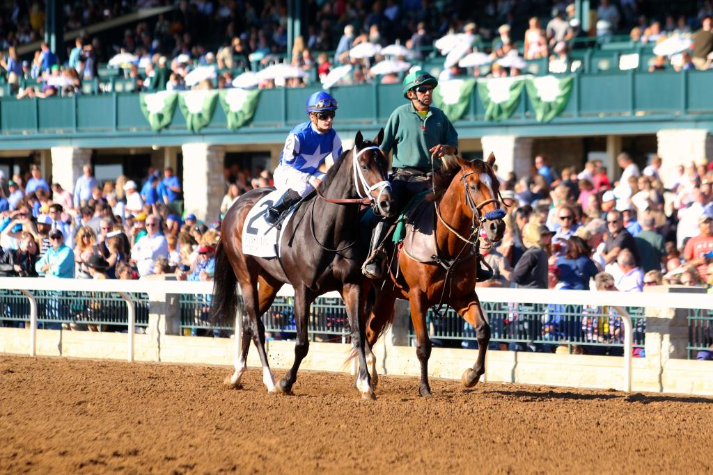 My heart was in my throat as Tepin warmed up in front of the packed house at Keeneland. The First Lady Stakes was the race last year that began Tepin's winning streak; it would take a huge effort to win it again. (Penelope P. Miller/America's Best Racing)