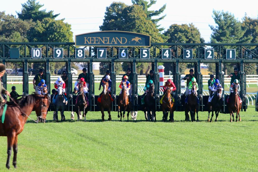 Moments later, it was time for the race to begin. The ten fillies and mares burst from the starting gate as one and raced each other to the first turn, with Photo Call leading the pack. (Penelope P. Miller/America's Best Racing)
