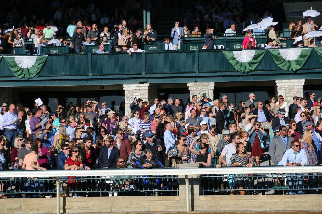 As the ten Thoroughbreds raced down the backstretch, Keeneland's crowd was on its feet to cheer hometown heroine Tepin as she tried for her ninth victory in a row. (Penelope P. Miller/America's Best Racing)