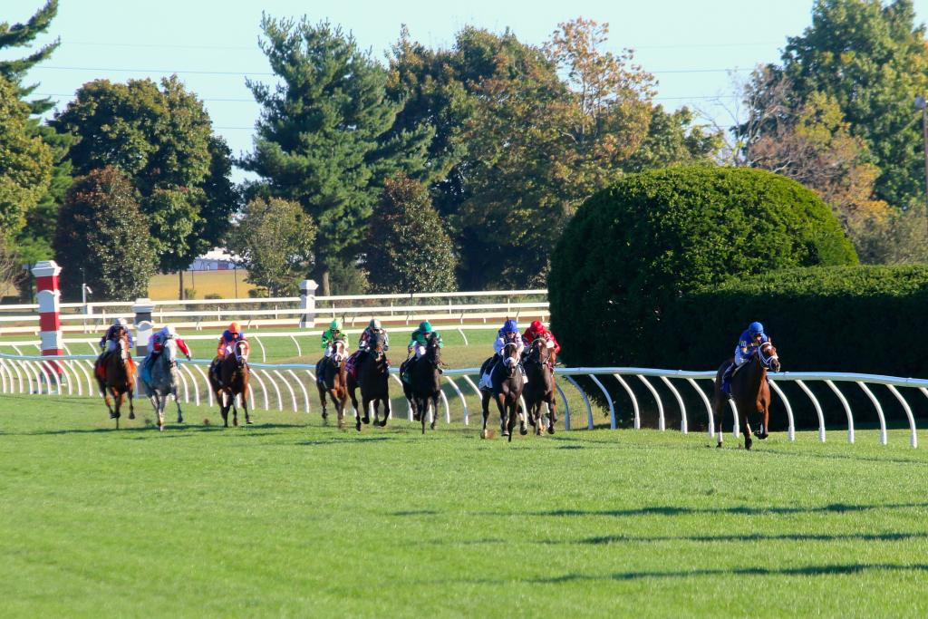 But when the horses rounded the turn for home, Photo Call was still in front, having established a massive and unhurried lead in the first half of the race. (Penelope P. Miller/America's Best Racing)