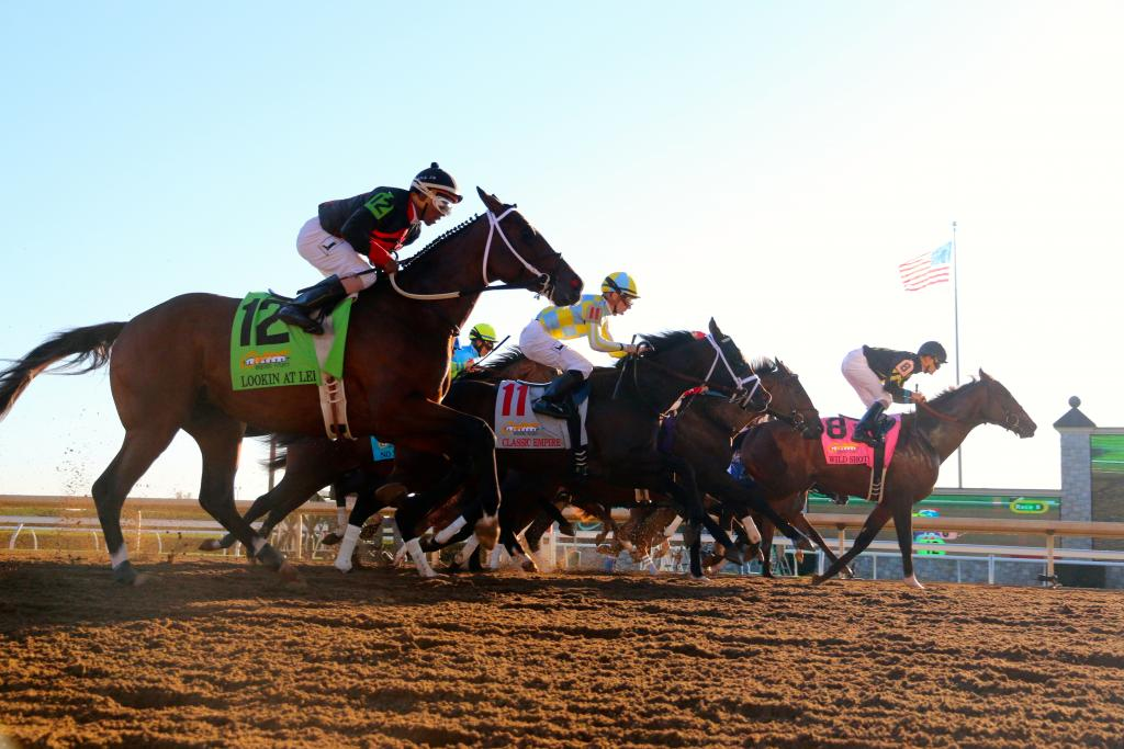 Since the twelve 2-year-old Thoroughbreds sprang from the starting gate right in front of the crowd, the roar from fans was tremendous as the race began. (Penelope P. Miller/America's Best Racing)