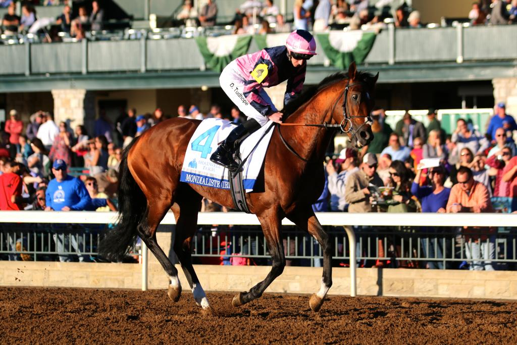 """Then it was time for the final major race of the afternoon: the $1 million Shadwell Turf Mile, a """"Win and You're In"""" test for the Breeders' Cup Mile. As the horses warmed up, a beautiful golden light engulfed the Keeneland grandstand. (Penelope P. Miller/America's Best Racing)"""