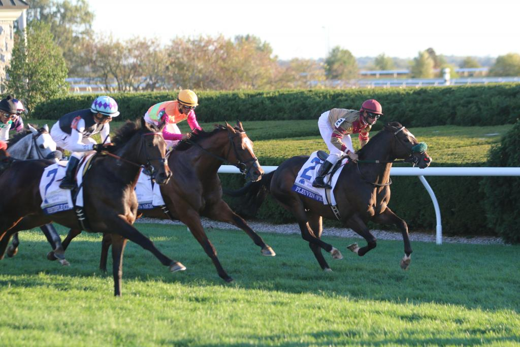 When the Shadwell Turf Mile began, the Thoroughbreds vied for position heading into the first turn. Edgar Prado searched for running room aboard Miss Temple City as Pleuven established an early lead. (Penelope P. Miller/America's Best Racing)
