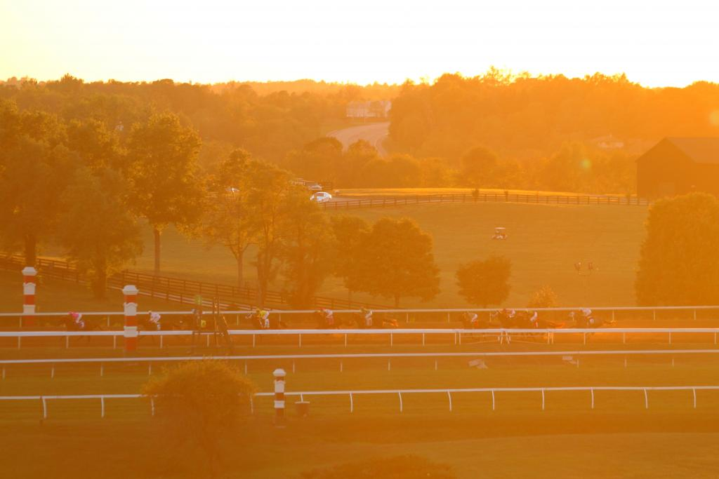 It was a fun hypothetical to ponder as the sun set of the final race of Keeneland's FallStars Saturday. Although the day was over, the Breeders' Cup is still ahead of us. As the saying goes: the best is yet to come! (Penelope P. Miller/America's Best Racing)