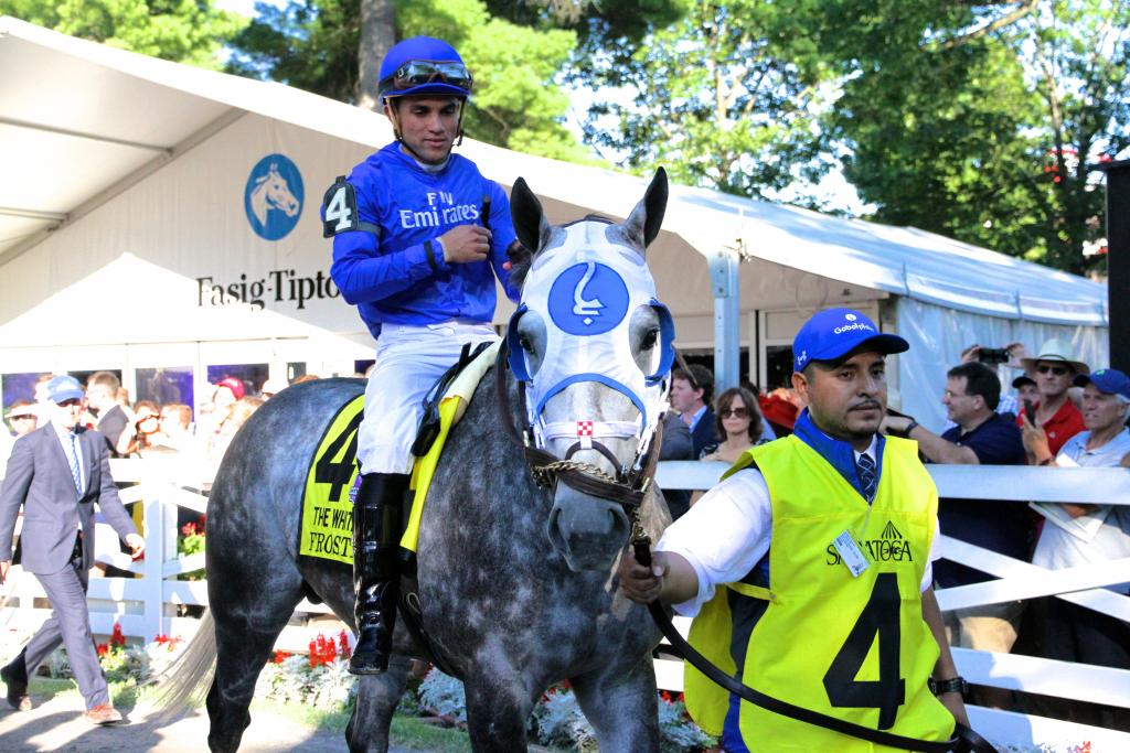 But in my heart, I knew that the stunning Frosted was the horse to beat in this race. While he was a talented 3-year-old, he's really coming into his own this year and looks to be the strongest Thoroughbred on the East Coast. (Penelope P. Miller/America's Best Racing)