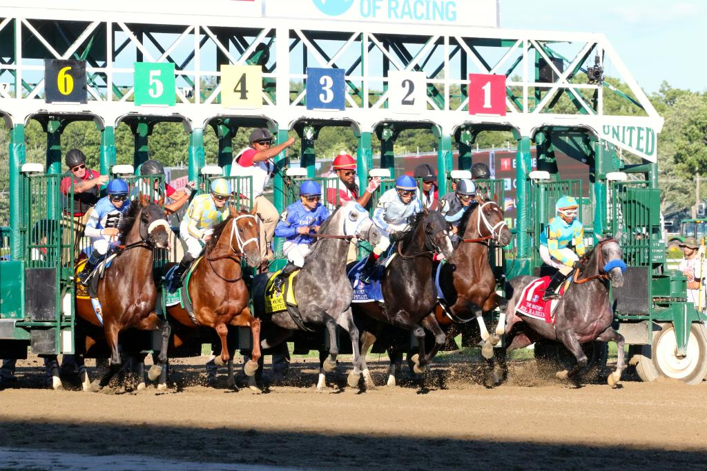 Finally, it was time for the Whitney Stakes to begin. With a clamor of bells and the screaming of fans, the contenders leapt from their starting gate stalls all in a line to begin their quest for the Whitney.  (Penelope P. Miller/America's Best Racing)