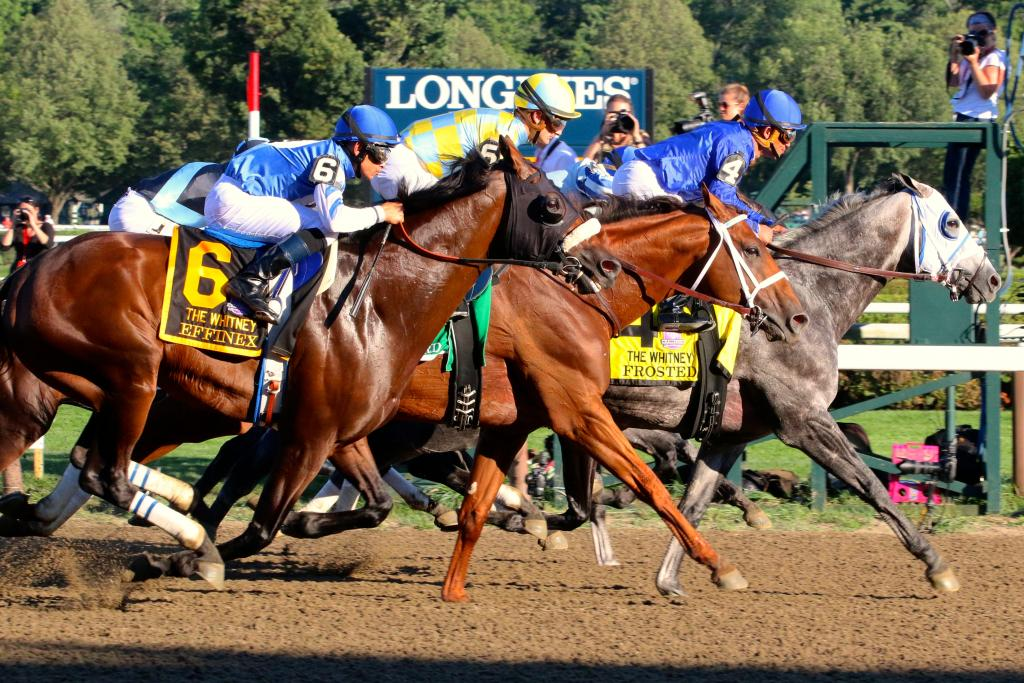 Steps out of the gate, Frosted took to the front of the pack and led the Whitney Stakes contenders into the first turn of the race.  (Penelope P. Miller/America's Best Racing)