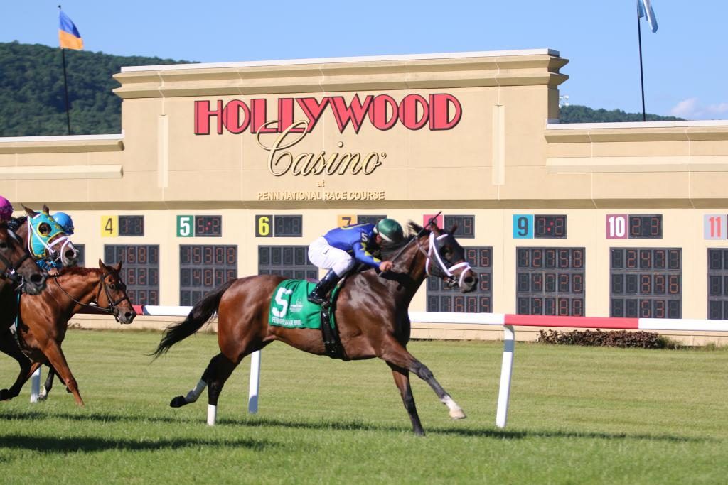 Jockey Javier Castellano, who will be inducted into horse racing's Hall of Fame this year, dominated the early part of the program, riding home winner after winner. (Penelope P. Miller/America's Best Racing)