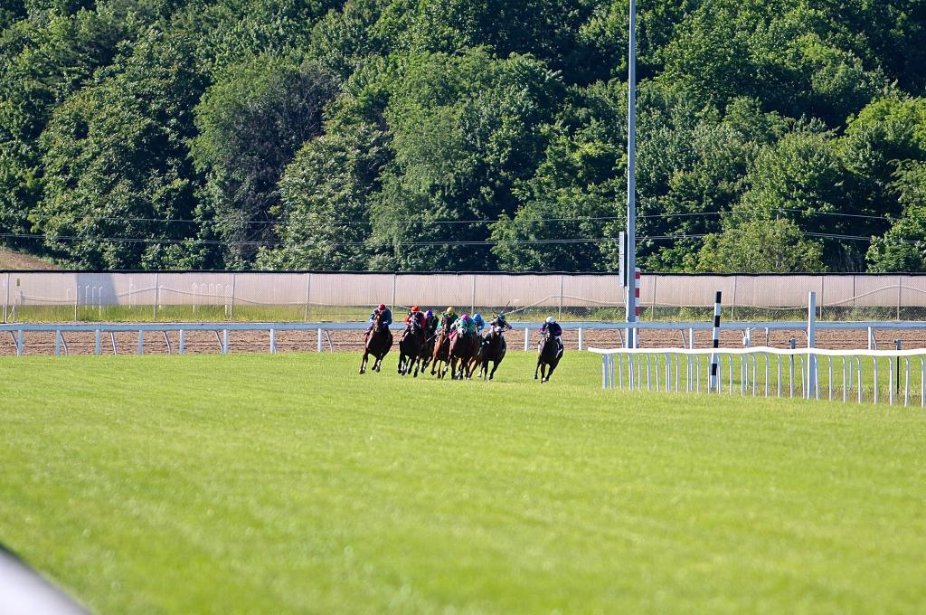 With that, my first Penn Mile was behind me. I am so glad that I took my inaugural journey to Penn National for the afternoon, and I can't wait to go back soon. I hope to see you there! (Penelope P. Miller/America's Best Racing)