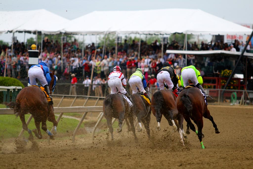 The crowd was on its feet and screaming as the Preakness runners rounded the first turn and headed into the backstretch; the race was on for the biggest prize in Maryland! (Penelope P. Miller/America's Best Racing)