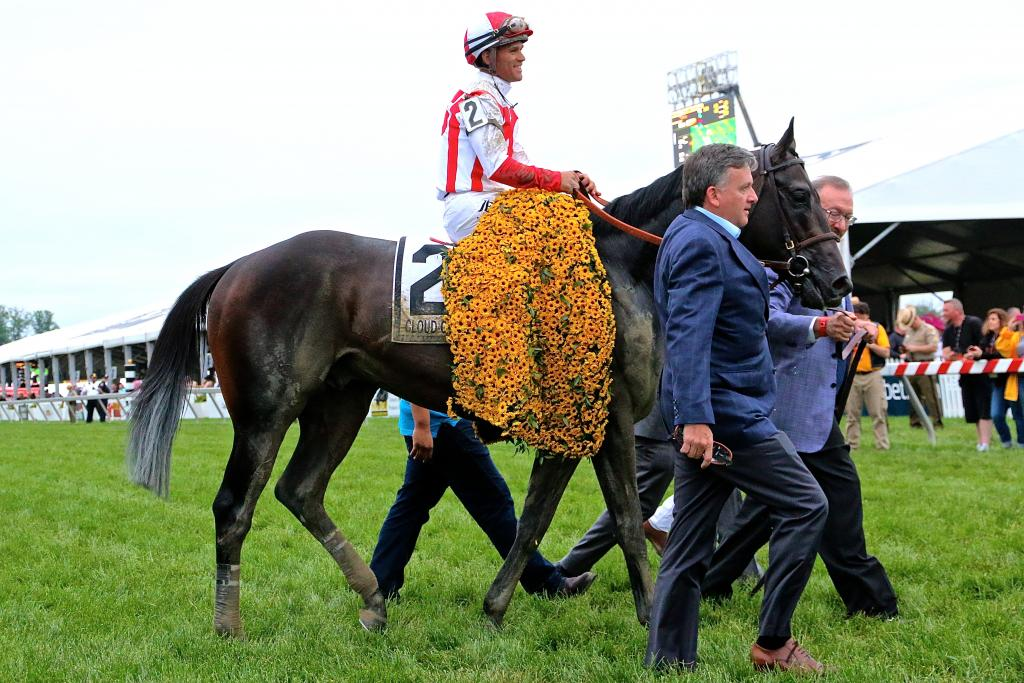 With the traditional garland of Black-Eyed Susans secured around his neck, Cloud Computing and his entourage made their way to the Preakness winner's circle. (Penelope P. Miller/America's Best Racing)