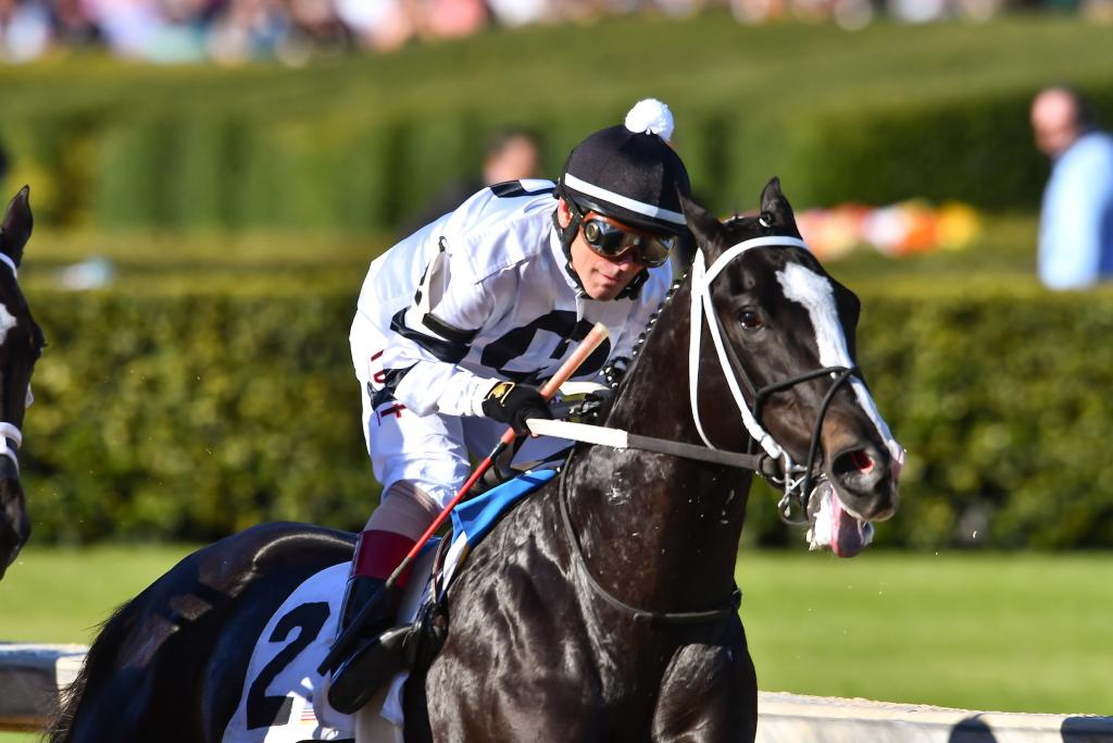 Long Range Toddy, winner of a division of the Grade 2 Rebel Stakes. (Eclipse Sportswire)