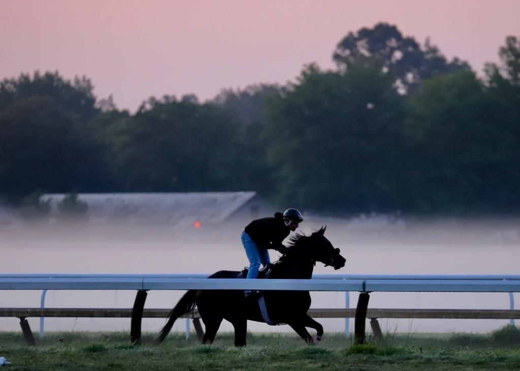 A misty morning in Saratoga. (Penelope P. Miller/America's Best Racing)