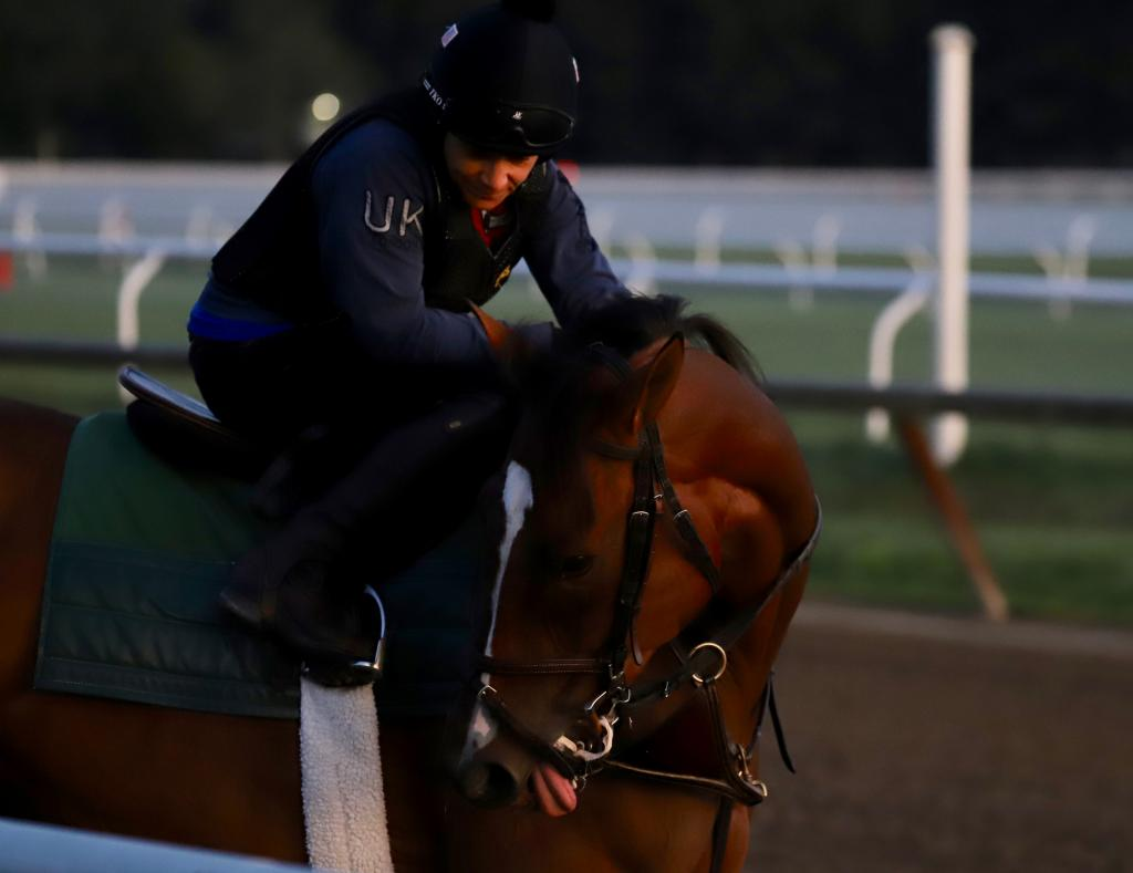A racehorse and rider share a quiet moment in the early hours. (Penelope P. Miller/America's Best Racing)