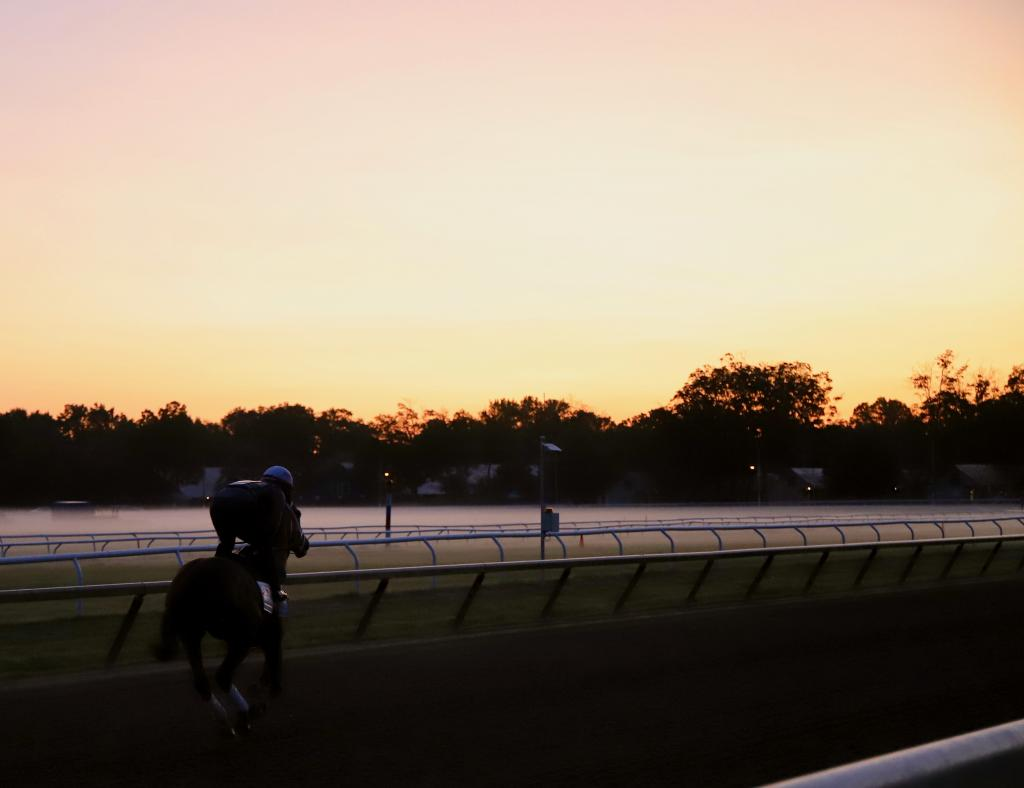 One of the first horses of the morning takes a lap at Oklahoma. (Penelope P. Miller/America's Best Racing)
