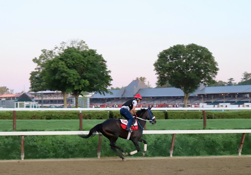 Galloping toward the grandstand. (Penelope P. Miller/America's Best Racing)