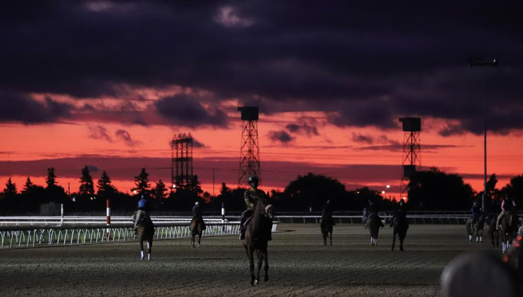 A spectacular sunrise over Woodbine on Friday morning. (Penelope P. Miller/America's Best Racing)