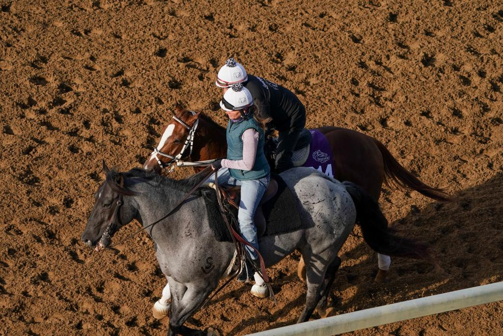 Aerial view of Michelle Lovell ponying on Elwood.  (Eclipse Sportswire)
