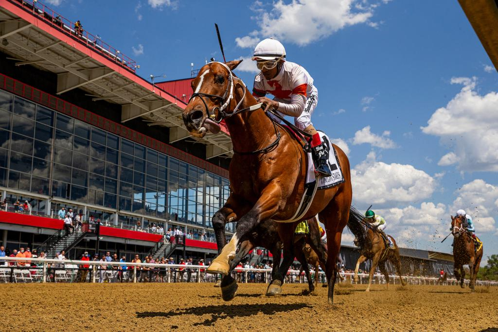 Mighty Mischief winning the Chick Lang Stakes. (Eclipse Sportswire)