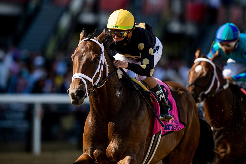 Special Reserve winning the Maryland Sprint Match Series Stakes. (Eclipse Sportswire)