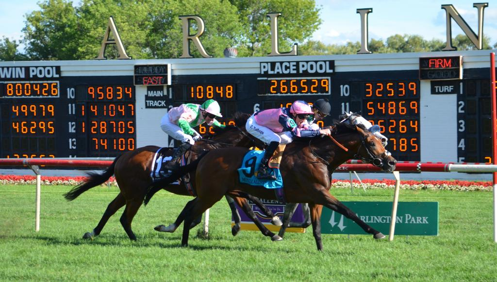 But Mondialiste was not to be denied a Breeders' Cup spot, winning a berth in the Longines Breeders' Cup Turf when taking the Arlington Million. (Melissa Bauer-Herzog/America's Best Racing)