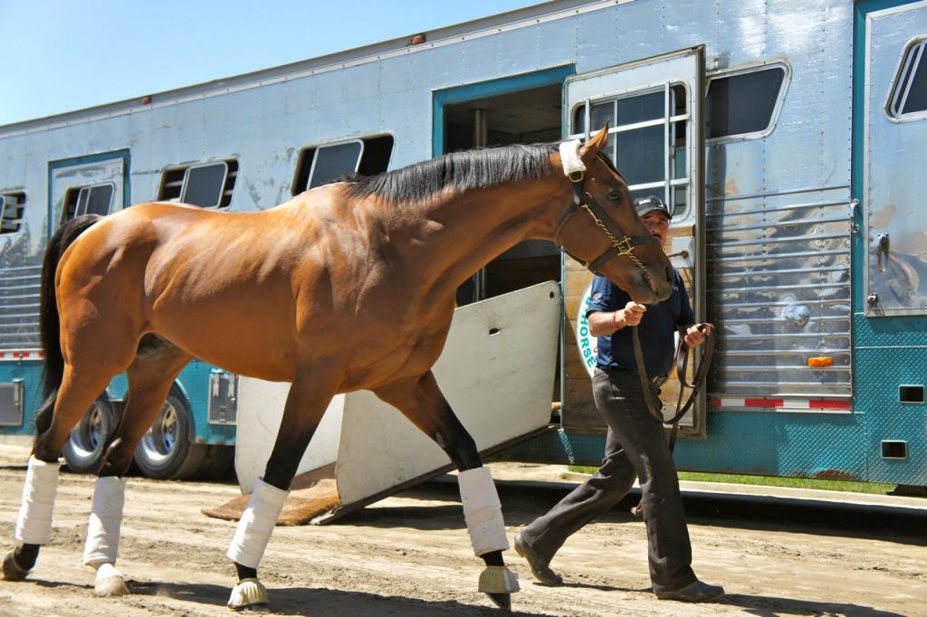 Multimillionaire Hoppertunity might have been hoping that some of the excitement was for him, too!  (Cynthia Holt photo)