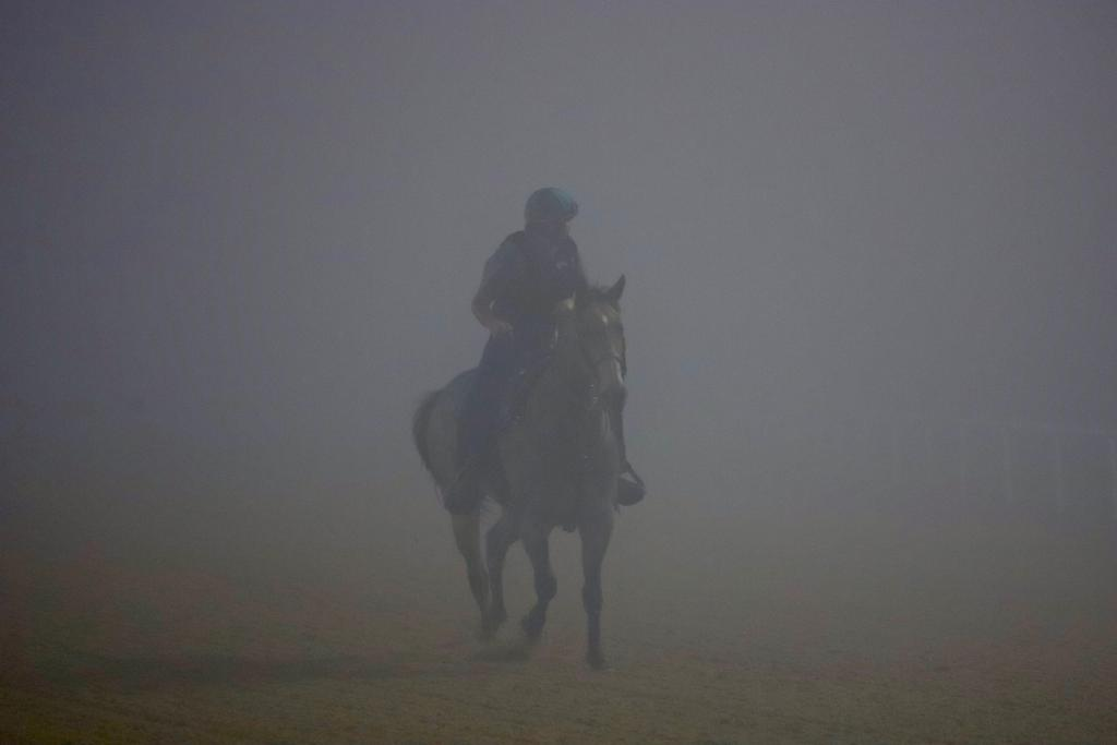 A pony and rider search for their racehorse charge as the fog thickens at Meydan. (Penelope P. Miller/America's Best Racing)