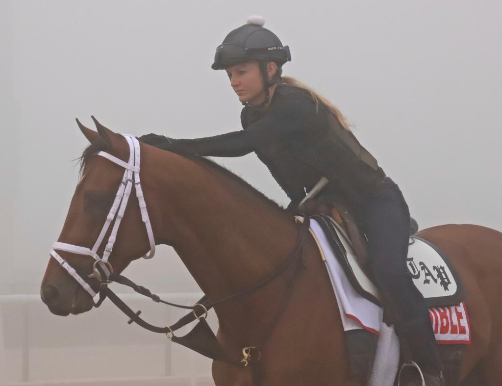 Audible gets a big pat from his rider as the two wait to train for the $12 million Dubai World Cup.  (Penelope P. Miller/America's Best Racing)
