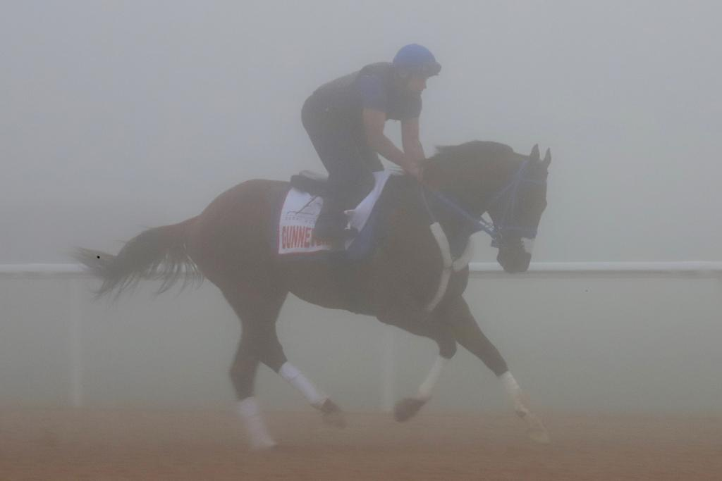 Gunnevera galloping in preparation for the Dubai World Cup. (Penelope P. Miller/America's Best Racing)