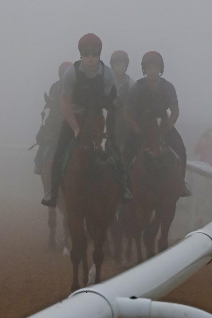 The Irish contingent emerges from the mist to train for Saturday's races. (Penelope P. Miller/America's Best Racing)