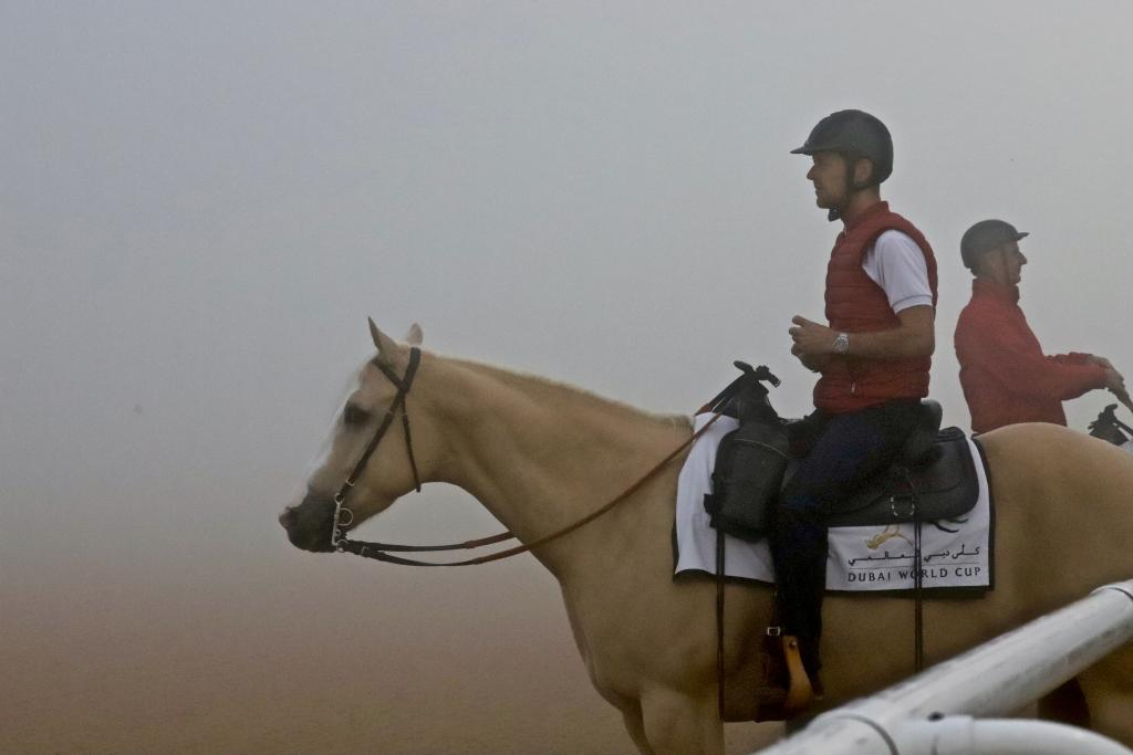 A Meydan outrider takes in the scene aboard his pony Blondie. (Penelope P. Miller/America's Best Racing)