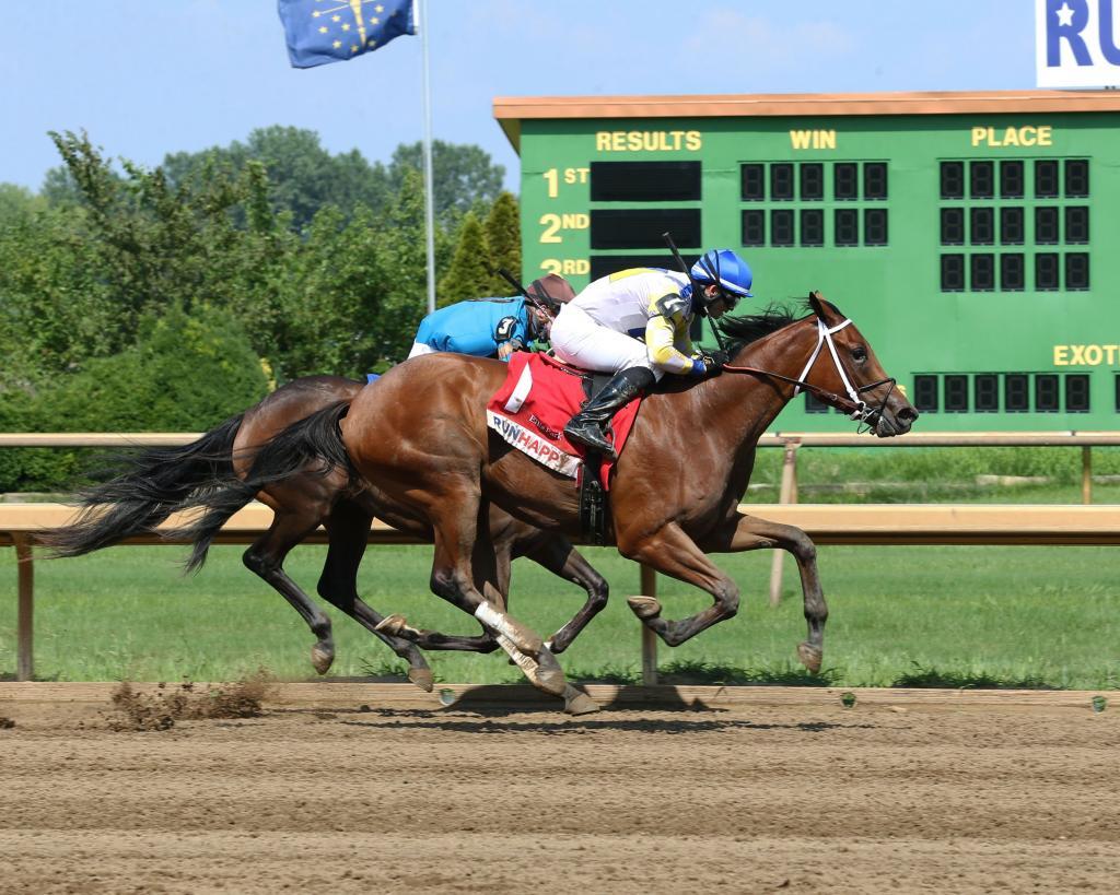 Fantasy Stakes runner-up Ava's Grace. (Coady Photography)