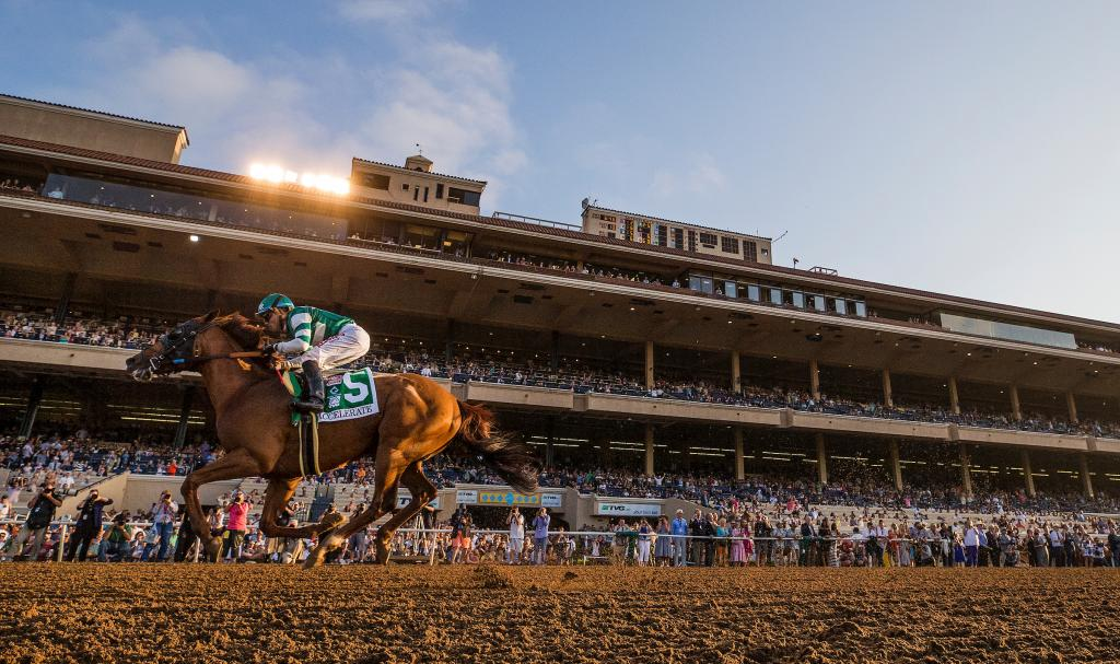 Accelerate winning 2018 Pacific Classic at Del Mar. (Eclipse Sportswire)