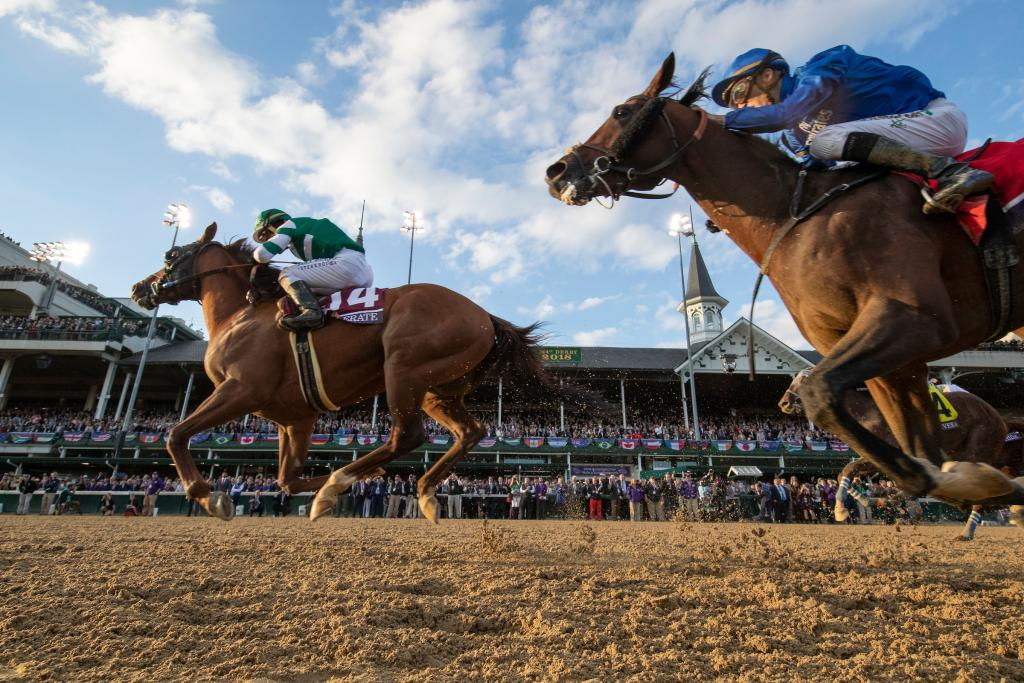 Accelerate winning the 2018 Breeders' Cup Classic. (Eclipse Sportswire)